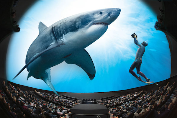 Omniversum spectaculaire film great white shark
