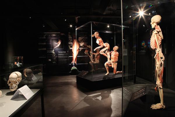 sex video nederland body 2 body amsterdam